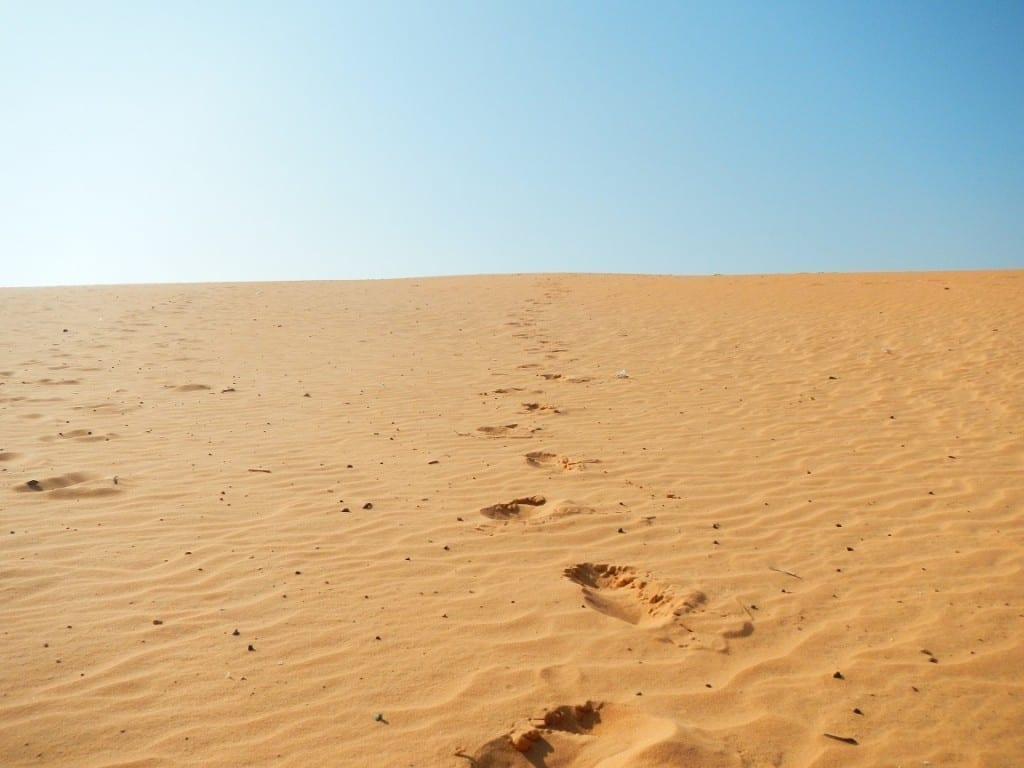 Muine Red Dunes