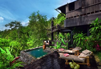 Capella Ubud view